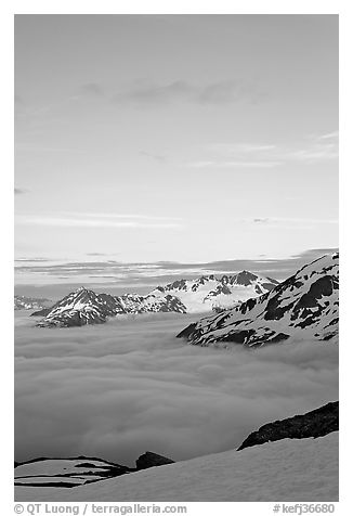 Snowy mountains and see of clouds at sunset. Kenai Fjords National Park (black and white)