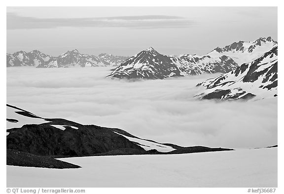 Mountains above low fog at dusk. Kenai Fjords National Park (black and white)