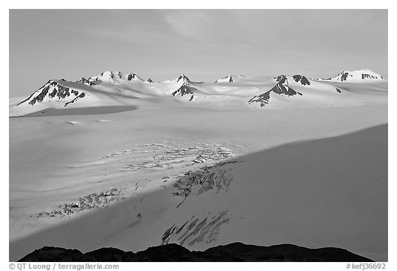 Snow-covered glacier and Harding Ice field peaks, sunrise. Kenai Fjords National Park (black and white)