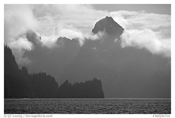 Peak emerging from the fog above bay waters. Kenai Fjords National Park (black and white)