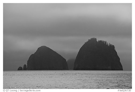 Islands emerging from fog, Aialik Bay. Kenai Fjords National Park (black and white)