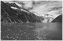 Northwestern Lagoon. Kenai Fjords National Park, Alaska, USA. (black and white)
