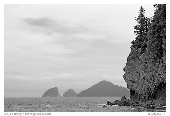 Chiswell Islands. Kenai Fjords National Park (black and white)