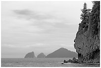 Chiswell Islands. Kenai Fjords National Park, Alaska, USA. (black and white)