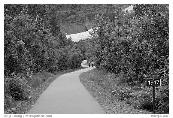 Exit Glacier trail with marker showing glacial retreat. Kenai Fjords National Park (black and white)