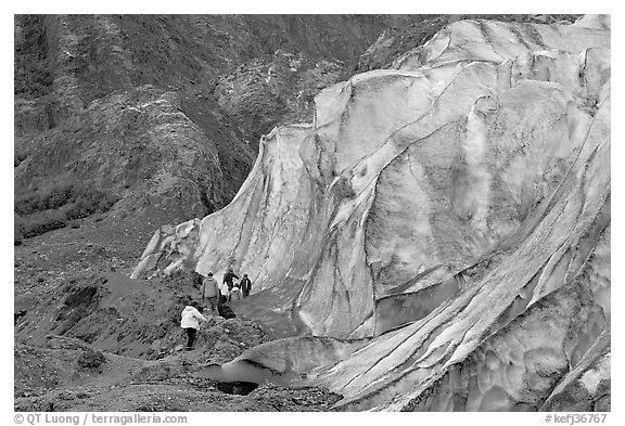 Family exploring at the base of Exit Glacier. Kenai Fjords National Park (black and white)