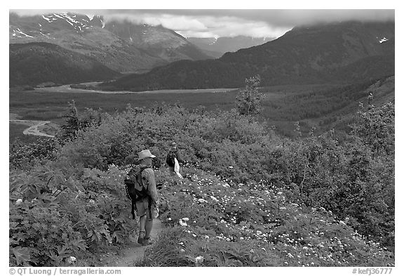 Hikers on Harding Icefield trail. Kenai Fjords National Park (black and white)