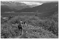 Hikers on Harding Icefield trail. Kenai Fjords National Park, Alaska, USA. (black and white)