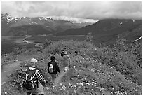 Hikers surrounded by wildflowers on Harding Icefield trail. Kenai Fjords National Park, Alaska, USA. (black and white)