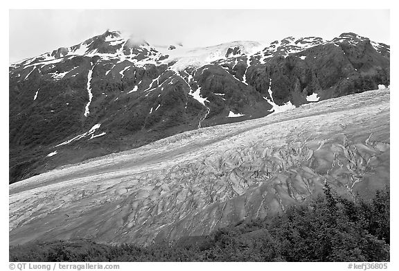 Exit glacier flowing down mountainside. Kenai Fjords National Park (black and white)