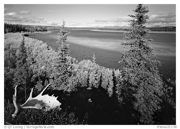 Antlers and bend of the Kobuk River, mid-morning. Kobuk Valley National Park (black and white)