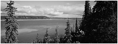 River landscape with forested riverbank. Kobuk Valley National Park (Panoramic black and white)