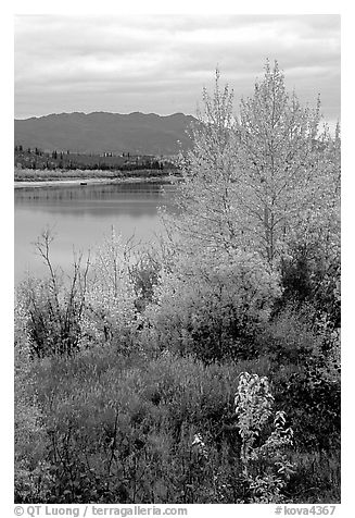 Kobuk River, Warring Mountains, and autumn colors, Onion Portage. Kobuk Valley National Park (black and white)