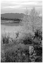 Kobuk River, Warring Mountains, and autumn colors, Onion Portage. Kobuk Valley National Park, Alaska, USA. (black and white)