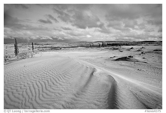 Ripples in the Great Sand Dunes. Kobuk Valley National Park (black and white)