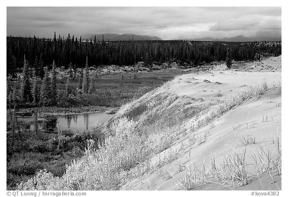 Edge of the Great Sand Dunes with tundra and taiga below. Kobuk Valley National Park (black and white)
