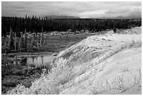 Edge of the Great Sand Dunes with tundra and taiga below. Kobuk Valley National Park ( black and white)