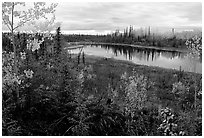 Pond near Kavet Creek. Kobuk Valley National Park ( black and white)