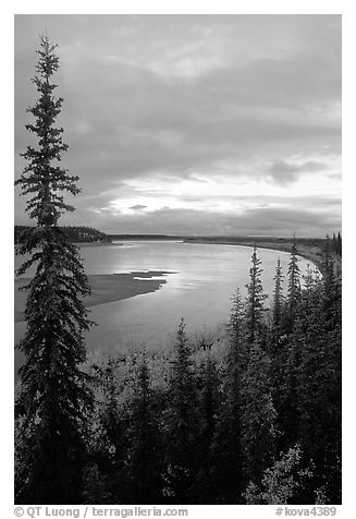 Boreal trees and bend of the Kobuk River, evening. Kobuk Valley National Park (black and white)
