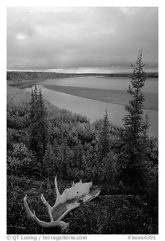 Antlers and bend of the Kobuk River, evening. Kobuk Valley National Park (black and white)