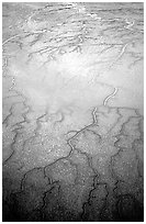 Aerial view of mud flat dendritic pattern on Cook inlet. Lake Clark National Park ( black and white)