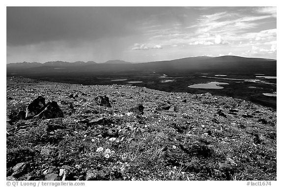 Sunny tundra with wildflowers and valley in dark storm clouds. Lake Clark National Park (black and white)