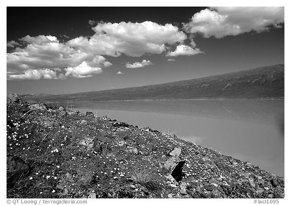 Turquoise Lake. Lake Clark National Park (black and white)