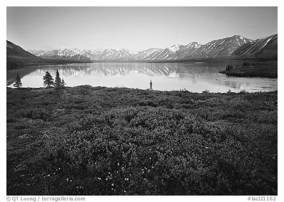 Tundra in summer with wildflowers and Twin Lake shore. Lake Clark National Park (black and white)