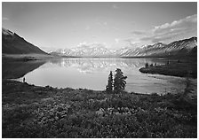 Twin Lakes with mountain reflections and green tundra, evening. Lake Clark National Park ( black and white)