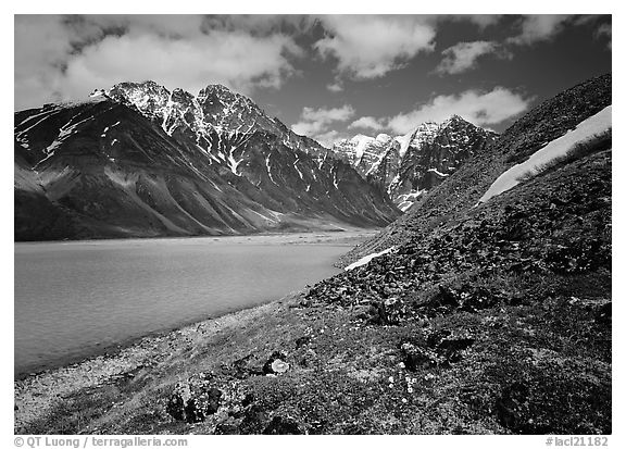 Tundra and mountains raising above Turquoise Lake. Lake Clark National Park (black and white)