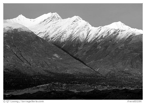 Fireweed mountains near Kennicott. Wrangell-St Elias National Park (black and white)