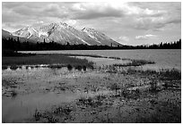 Bonaza ridge seen above a pond at the base of Mt Donoho, afternoon. Wrangell-St Elias National Park, Alaska, USA. (black and white)