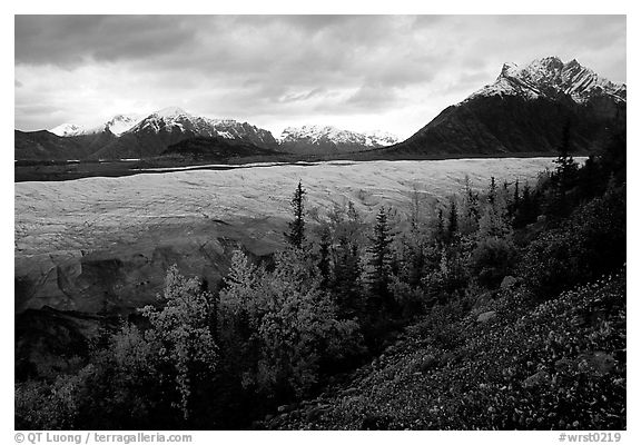 Fall colors, Mt Donoho above Root glacier. Wrangell-St Elias National Park (black and white)
