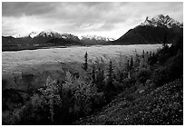 Fall colors, Mt Donoho above Root glacier. Wrangell-St Elias National Park, Alaska, USA. (black and white)