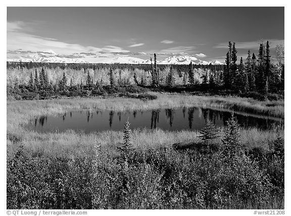 Pond and Wrangell range in the distance. Wrangell-St Elias National Park (black and white)