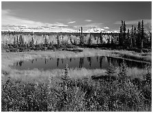 Pond and Wrangell range in the distance. Wrangell-St Elias National Park, Alaska, USA. (black and white)