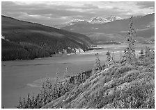 Wide Chitina river. Wrangell-St Elias National Park ( black and white)
