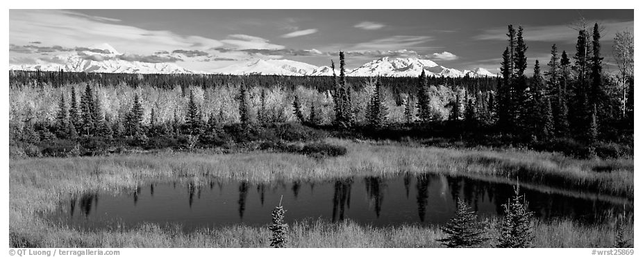 Autumn landscape with pond, forest, and distant mountains. Wrangell-St Elias National Park (black and white)