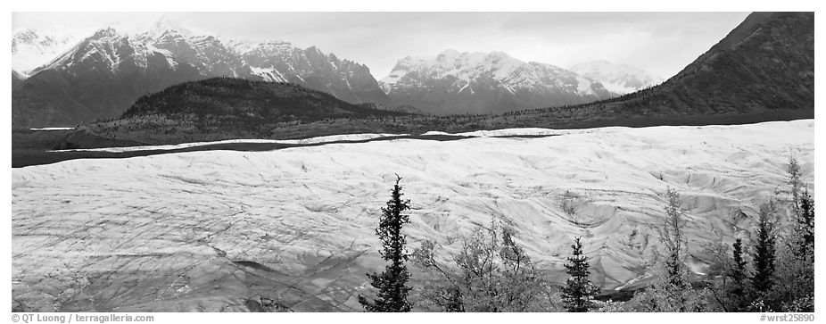 Wide mountain glacier. Wrangell-St Elias National Park (black and white)