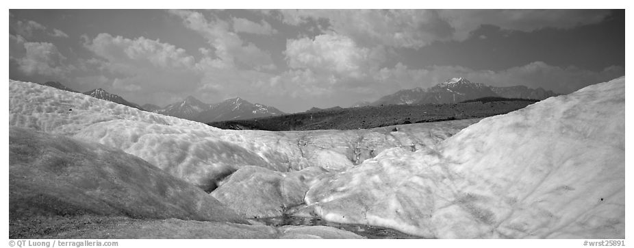 Glacier landscape. Wrangell-St Elias National Park (black and white)