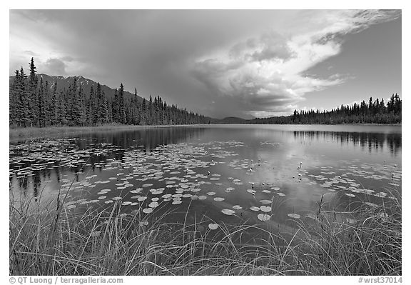 Crystal Lake with starting afternoon shower. Wrangell-St Elias National Park (black and white)