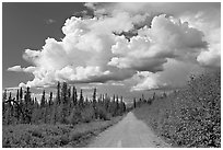 Mc Carthy road and afternoon thunderstorm clouds. Wrangell-St Elias National Park, Alaska, USA. (black and white)