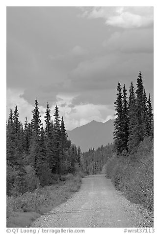 McCarthy road. Wrangell-St Elias National Park (black and white)