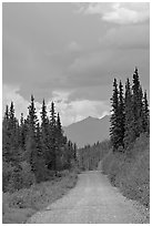 McCarthy road. Wrangell-St Elias National Park, Alaska, USA. (black and white)