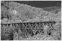 Gilahina trestle and hills. Wrangell-St Elias National Park, Alaska, USA. (black and white)