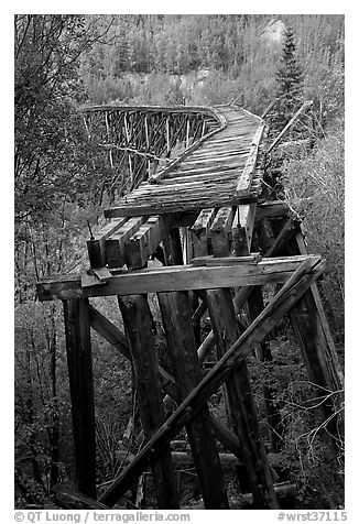Old railroad bed on Gilahina trestle. Wrangell-St Elias National Park (black and white)