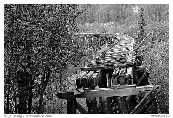 Gilahina trestle, constructed in eight winter days. Wrangell-St Elias National Park (black and white)