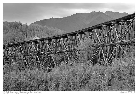 Historic Railroad trestle crossing valley. Wrangell-St Elias National Park (black and white)