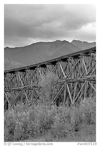 Historic CR and NW Gilahina trestle. Wrangell-St Elias National Park (black and white)