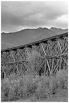 Historic CR and NW Gilahina trestle. Wrangell-St Elias National Park, Alaska, USA. (black and white)